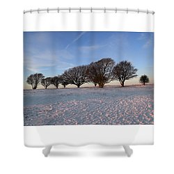 Winter Trees On The Ring Shower Curtain