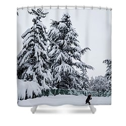 Shower Curtain featuring the photograph Winter Trekking-2 by Okan YILMAZ