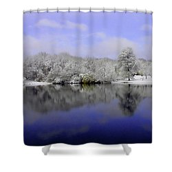 Winter View Shower Curtain by Karol Livote