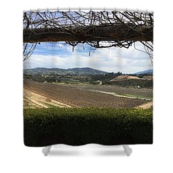 Winter Vines Shower Curtain