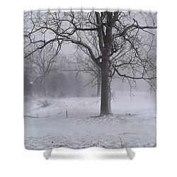 Winter Walnut Shower Curtain