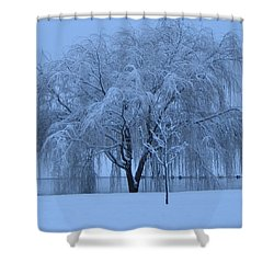 Winter Willow Tree Before Dawn_fort Worth_tx Shower Curtain by Barbara Yearty