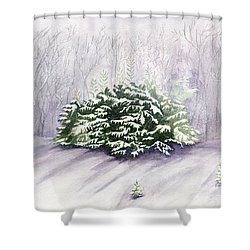 Shower Curtain featuring the painting Winter Wind by Melly Terpening