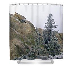 Winter Wind Shower Curtain