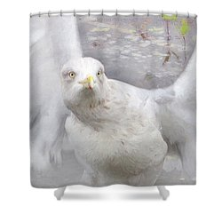 Winter Wings Shower Curtain