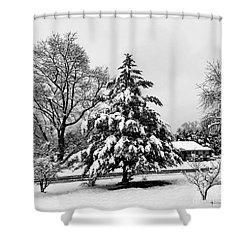 Winter Wonderland - 2017 Shower Curtain