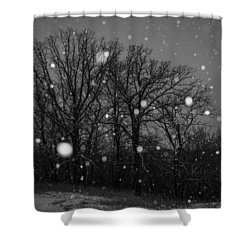 Winter Wonderland Shower Curtain by Annette Berglund
