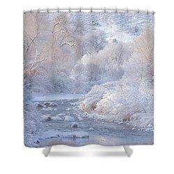Winter Wonderland - Colorado Shower Curtain