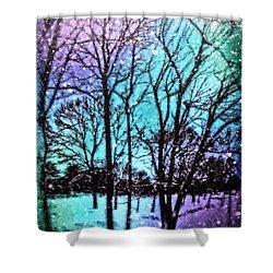 Winter Wonderland Painting Shower Curtain