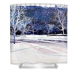 Winter Wonderland Shower Curtain by Paul Sachtleben