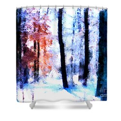 Winter Woods Shower Curtain by Craig Walters