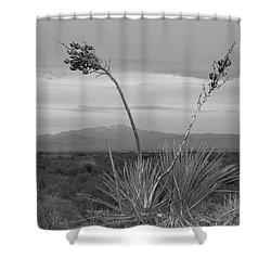 Winter Yucca Shower Curtain