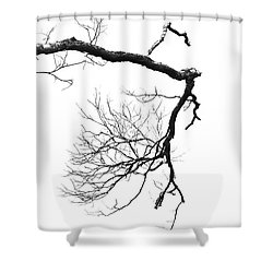 Shower Curtain featuring the photograph Wintered Over by Skip Willits