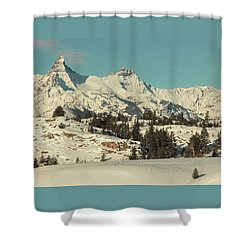 Winters Beauty Shower Curtain