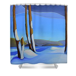 Winter's Calm Shower Curtain