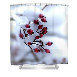 Winter's Color Shower Curtain