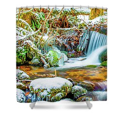 Winters Creek Shower Curtain