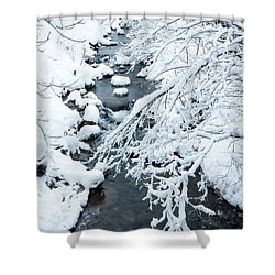 Winters Creek- Shower Curtain