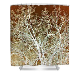 Winter's Dance Shower Curtain