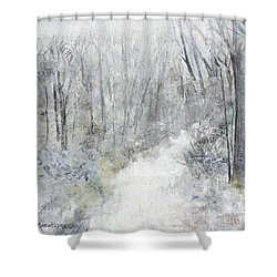 Shower Curtain featuring the painting Winter's Day by Robin Maria Pedrero