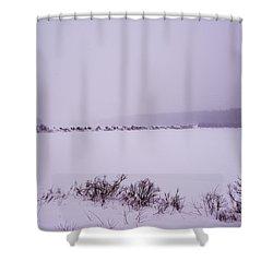 Winter's Desolation Shower Curtain