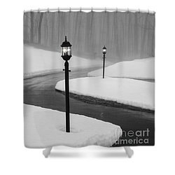Winter's End Shower Curtain by Diane Diederich