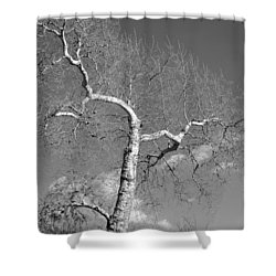 Winter's Ghost Shower Curtain