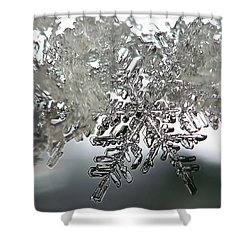 Winter's Glory Shower Curtain
