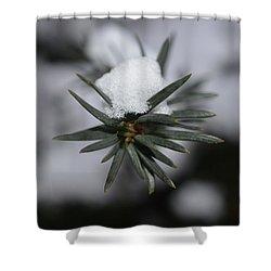 Winter's Grip Shower Curtain