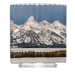 Winter's Majesty Shower Curtain