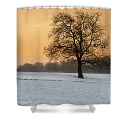 Winters Morning Shower Curtain