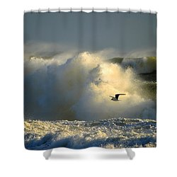 Winter's Passing Shower Curtain by Dianne Cowen