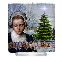 Winters Past Shower Curtain