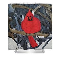 Winters Refuge Shower Curtain
