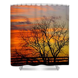 Winter's Scene Shower Curtain by Donald C Morgan