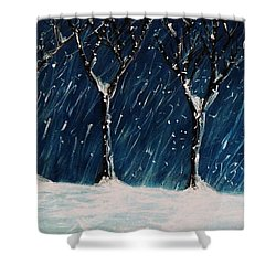 Winter's Snow Shower Curtain
