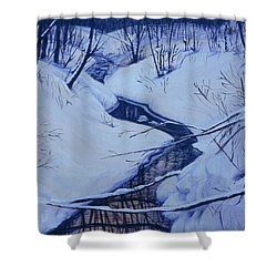 Winter's Stream Shower Curtain