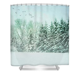 Winter's Watch Shower Curtain