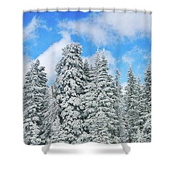 Winterscape Shower Curtain by Jeff Kolker