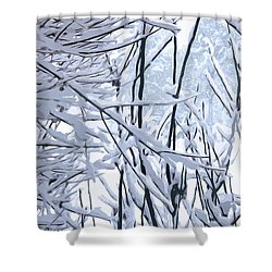 Wintertide Shower Curtain