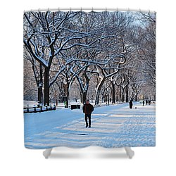 Wintertime In Central Park Shower Curtain by James Kirkikis