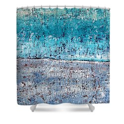 Wintry Mesa Shower Curtain