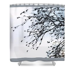 Wintry Mood - Shower Curtain