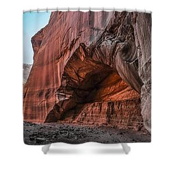 Wire Pass Archway Shower Curtain