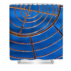 Wire Web Shower Curtain