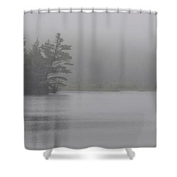 Wisconsin In Grey And Green Shower Curtain