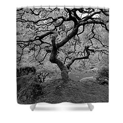 Shower Curtain featuring the photograph Wisdom Bw by Jonathan Davison