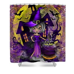 Wisdom Witch Fantasy Art Shower Curtain