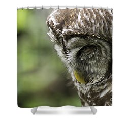 Wise 'ol Owl Shower Curtain