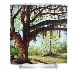 Wise Old Oak Shower Curtain by AnnaJo Vahle